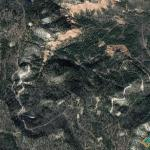 The Face of the Forests, Apache County, Arizona, USA