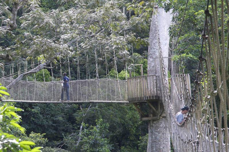 10 Most Scary Bridges In The World WeirdlyOddcom