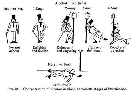 A Scientific Guide To Blood Alcohol Levels