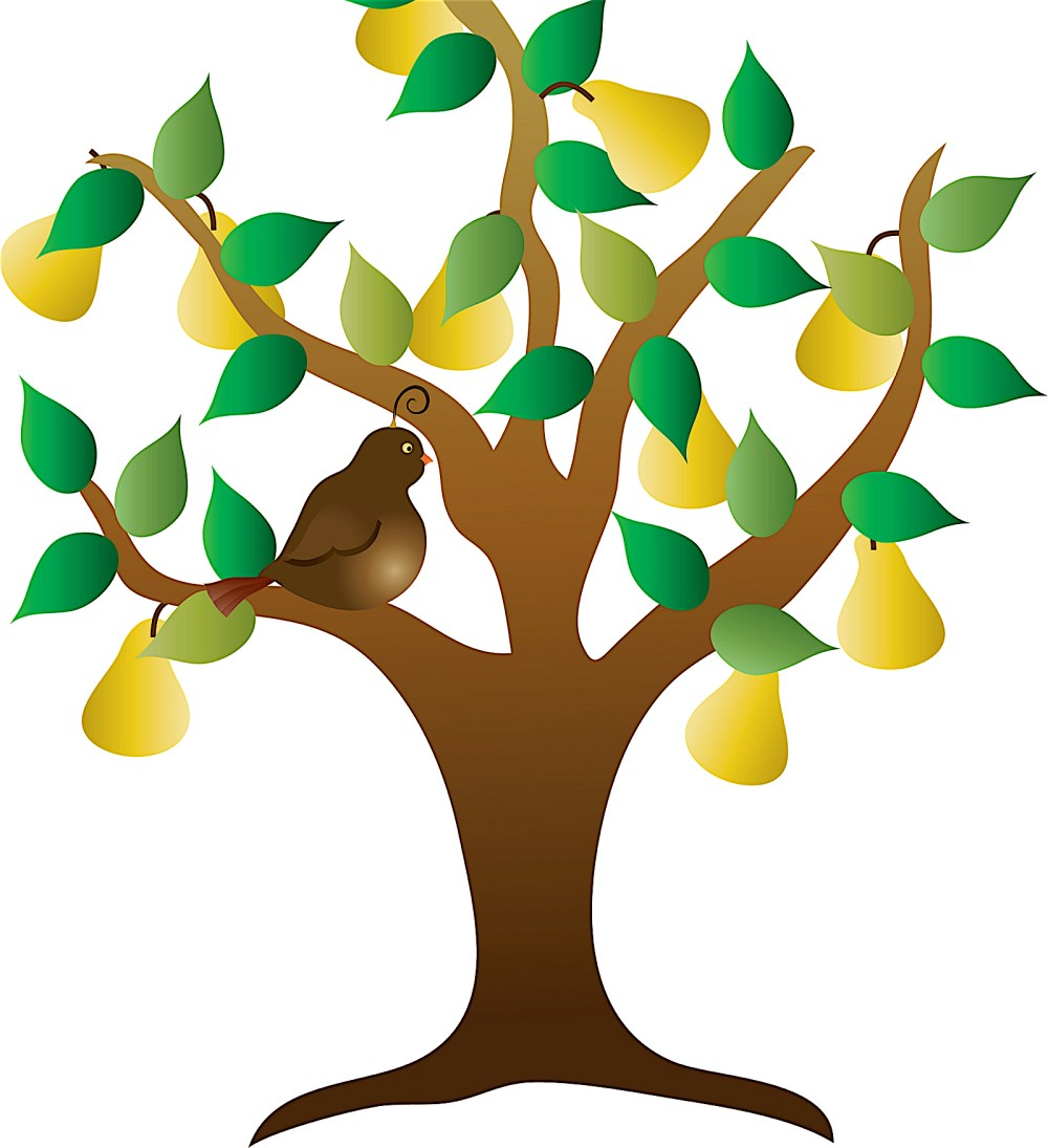 medium resolution of  days of christmas song color illustration of a stylized tree with yellow pears and green leaves and a brown partridge