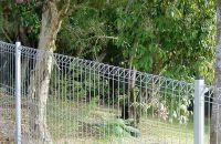 Welded Wire Garden Fences Make Your Garden Charming