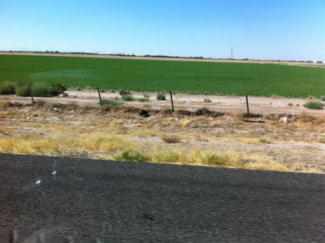 3:45 pm - irrigated crops for a short distance.