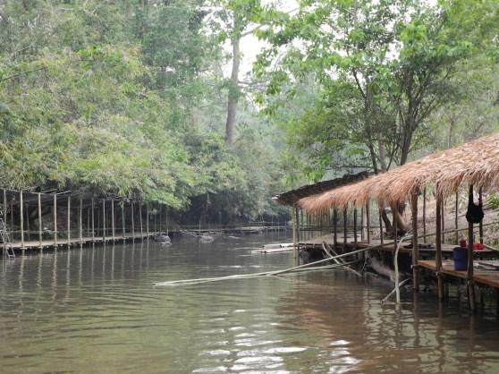 MaeTeang River 147