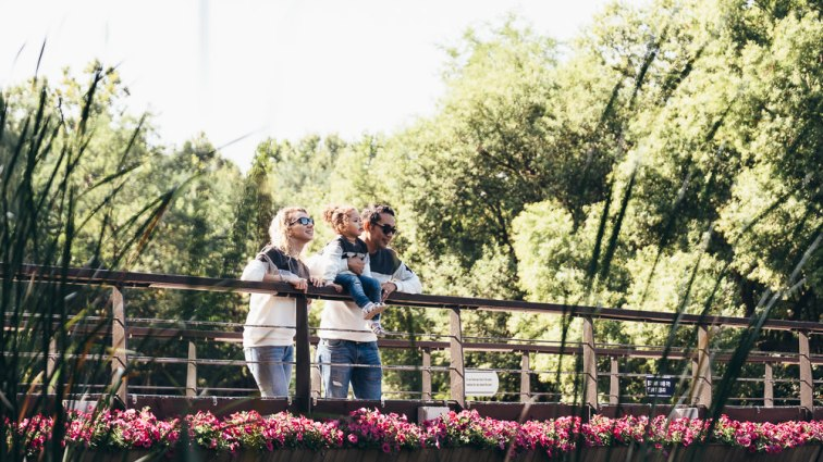 Ataalla Family - Family Photography in Seoul Forest - Looking for Fish