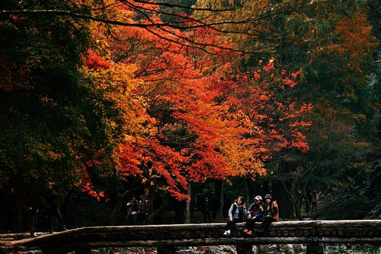Gratuitous Selfies, Gangcheonsan National Park, Sunchang Gochujang Village for Smile Magazine, Korea Editorial Photographer