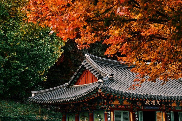 Temple in Autumn, Gangcheonsan National Park, Sunchang Gochujang Village for Smile Magazine, Korea Editorial Photographer