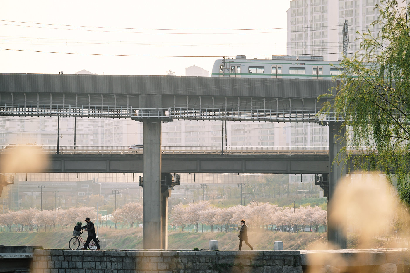 Seoul - Social Distancing