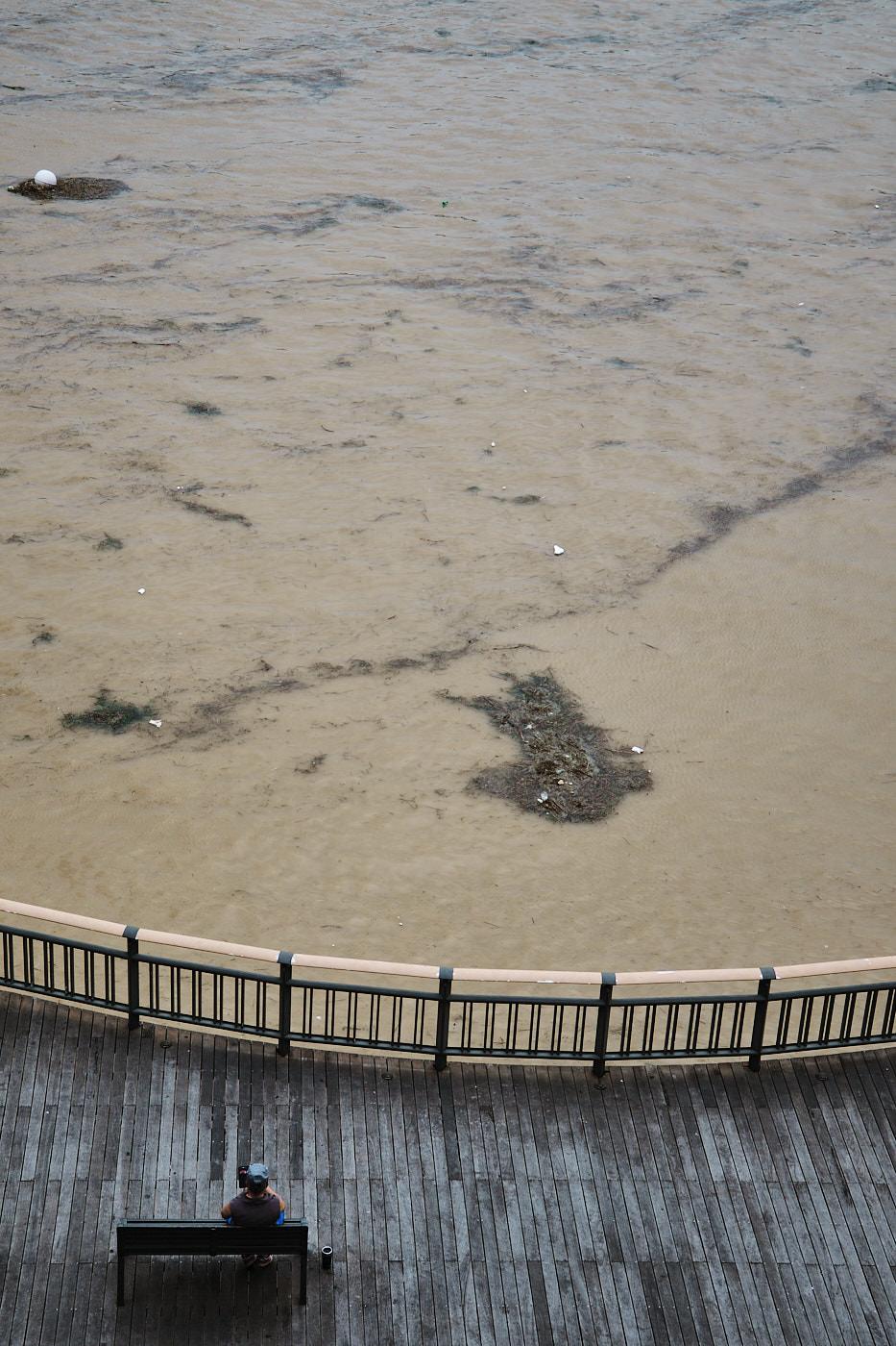 Han River Floods 2020 - Seoul
