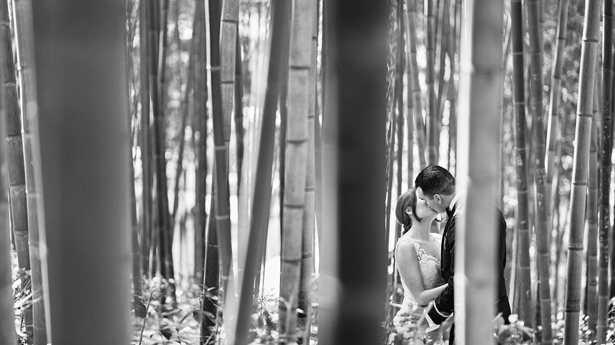 Damyang Bamboo Pre-Wedding - Samantha and Fernando