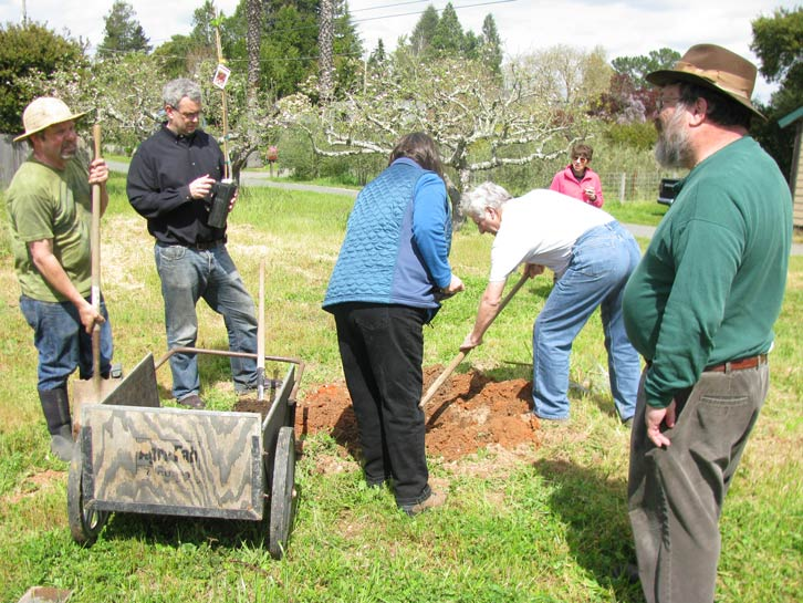 With multiple volunteers, we take turns digging. From left: yesway, marvy, aronan (back to camera), ode, Joan, oz