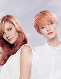 Wella illumina color brunette look also information hair colour chart professionals rh