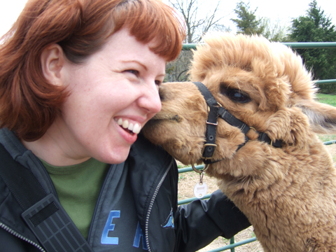 alpaca-and-ana