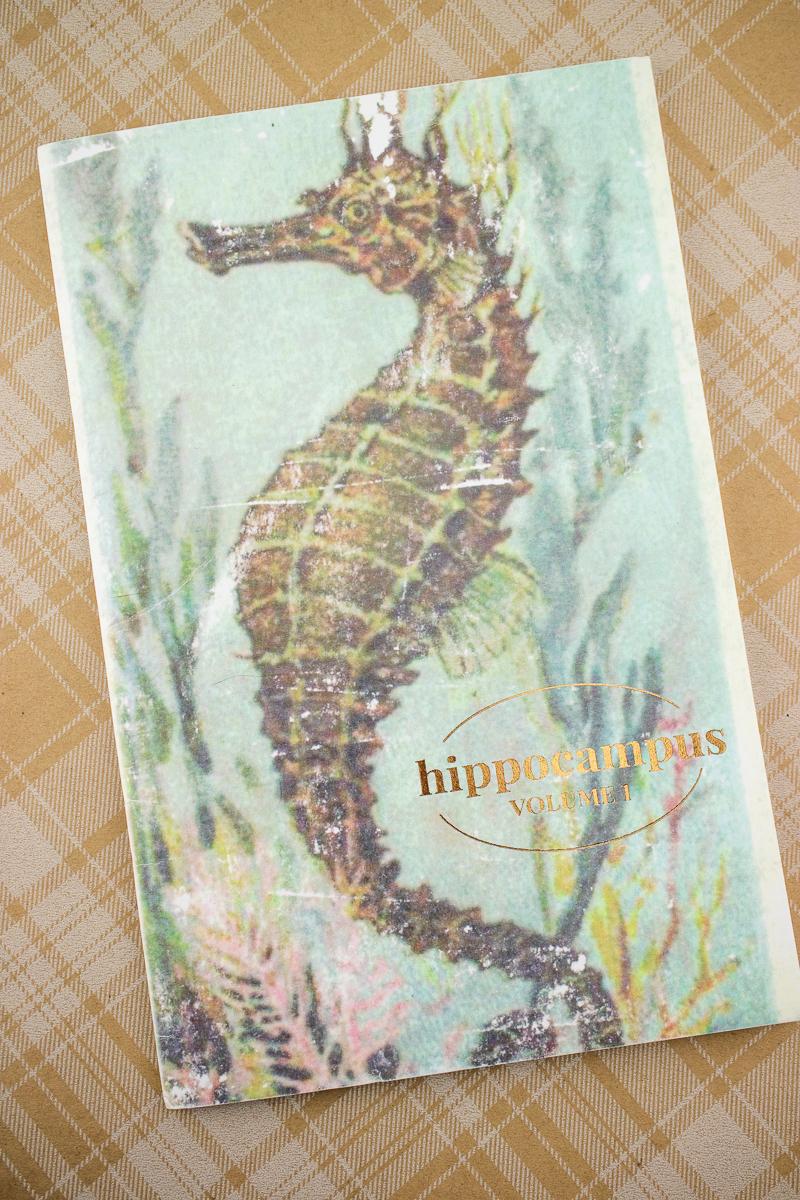 Paper Seahorse