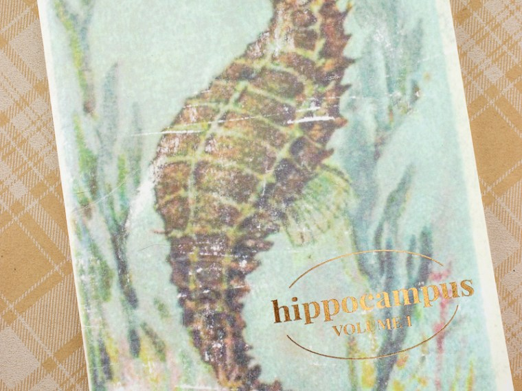 Eye Candy: Hippocampus Zine