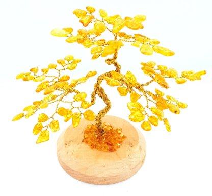 Spirit of Amber Tree Medium 1