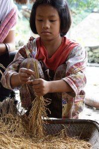 Health, Diet, Food, Rice, Whole Grain