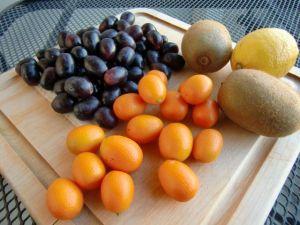 Kumquat Kiwi Soup w/Black Grapes