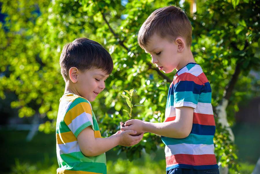 Safe Fun Montessori Preschool-Inspired Activities to Play Outside - montessori primary program - Montessori West