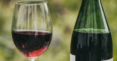 vino ecológico