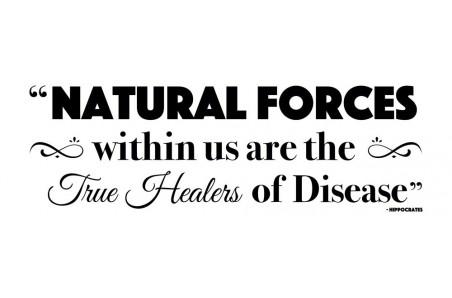 Chiropractic True Healers Decal