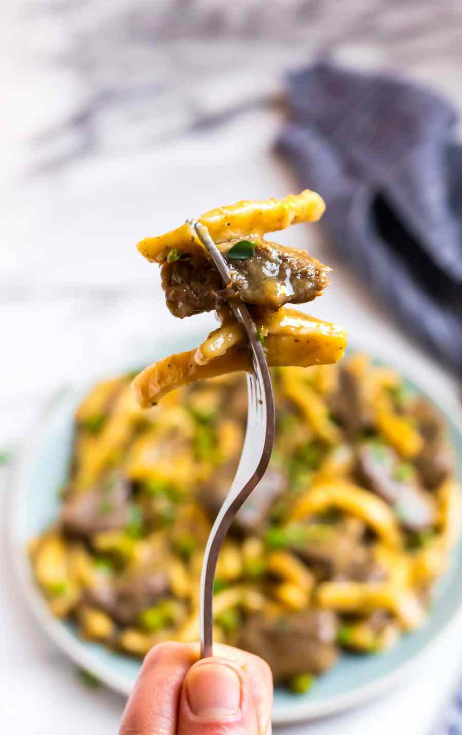 Easy pressure cooker beef and noodles on a fork made with Reames egg noodles