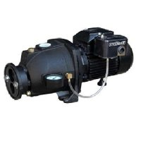 Everbilt DP550C 1 HP Convertible Jet Pump