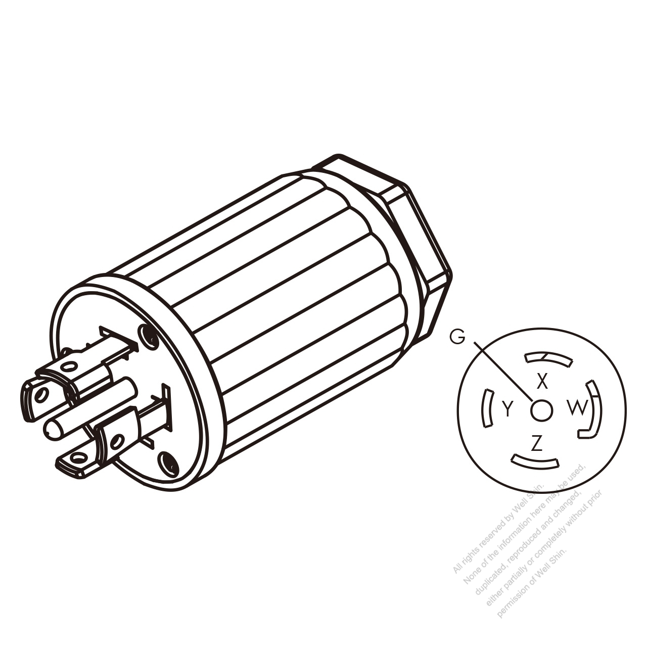 10 Pole Motor Wiring Diagram