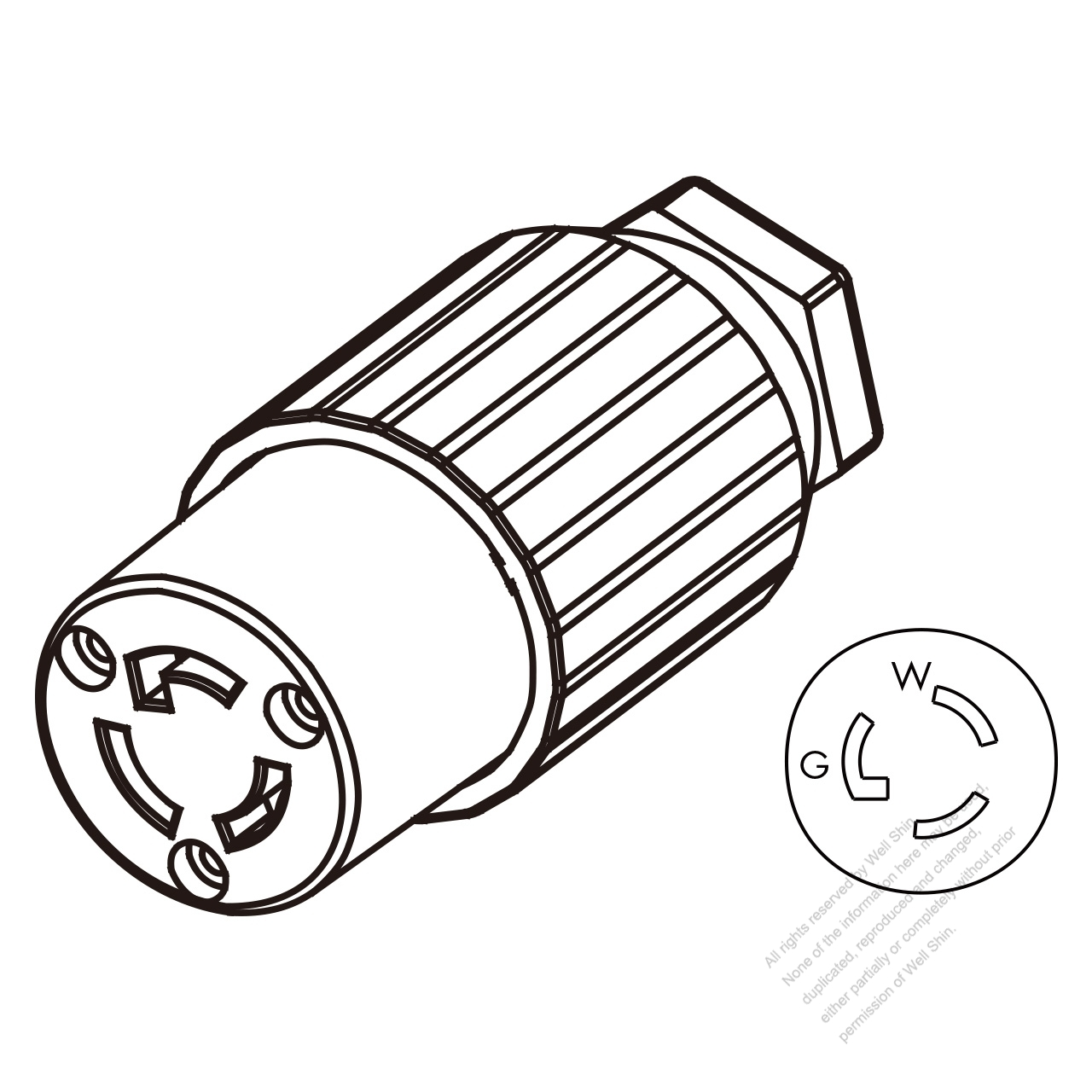 USA/Canada Twist-Lock Connector (NEMA L5-15R) 3-Pin