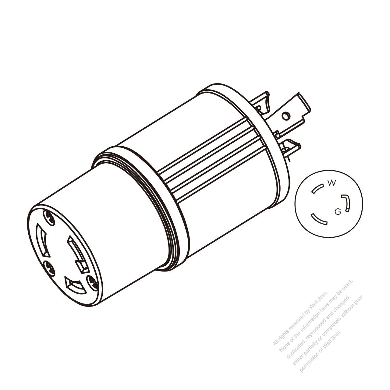 Adapter Plug, NEMA L5-20P Twist Locking to L5-30R, 2 P, 3