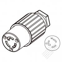 USA/Canada RV Plug (NEMA TT-30P) 3-Pin Straight, 2 P 3