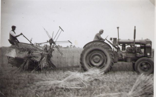 Image result for farming in the 50s uk