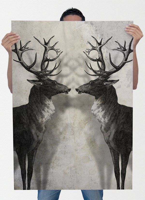 Deer Print Antlers Stag Wall Art Giclee Cotton Canvas And Paper