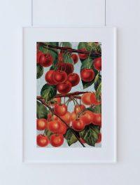 Kitchen Wall Art Cherries Print Kitchen Print Food ...