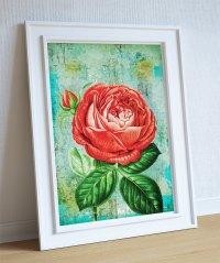 Rose Print botanical print flower Rose decor floral print ...
