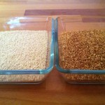 Sesame Seeds Before and After Roasting