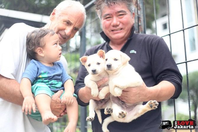 tasha may_welovejakarta_we love jakarta_what to do in Jakarta_Taman Suropati_Puppies in our complex_Kids in Jakarta
