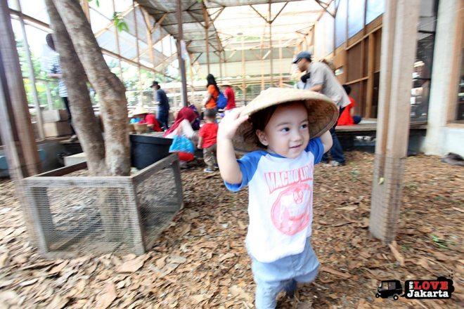 Kuntum Bogor_Quantum Nursery Bogor_Kuntum Farmfield Bogor_Tasha May_welovejakarta_we love jakarta_jakarta with kids_kids in indonesia_what to do with kids on the weekend in jakarta