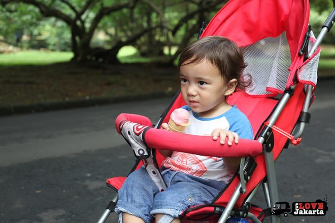 Toddler in pram eating ice-cream at Bogor Botanical Gardens Indonesia