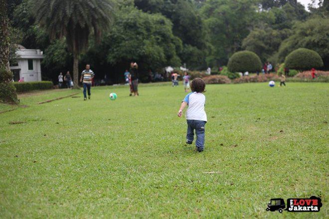Bogor Botanical Gardens Indonesia