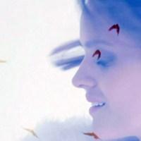 Jenny Langlo - Mockingbirds