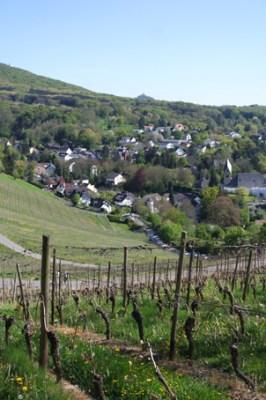 Weinhaus Gut Sülz Bonn Königswinter Oberdollendorf Tipp Weinlokal Siebengebirge Wanderung
