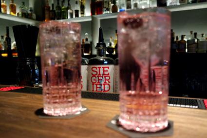 Siegfried Gin Bar Bonn Mozartstraße Bartipp Bonn guter Gin Tonic