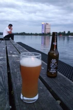 Bonner guter Platz für ein Bier im Freien Sommer Rhein Grillen