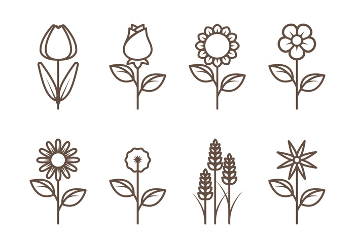 Flower Outlines Simple The Best Original Gemstone