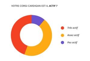 actif_corgi_cardian