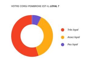loyal_corgi_pembroke