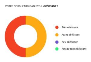 obeissant_corgi_cardian
