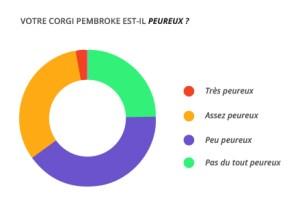 peureux_corgi_pembroke