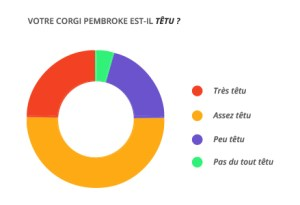 tetu_corgi_pembroke