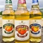 Gwynt Y Ddraig Cider